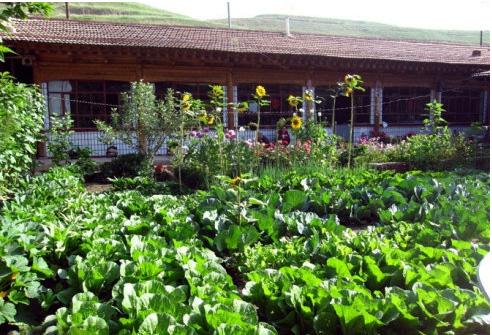 一亩田农庄